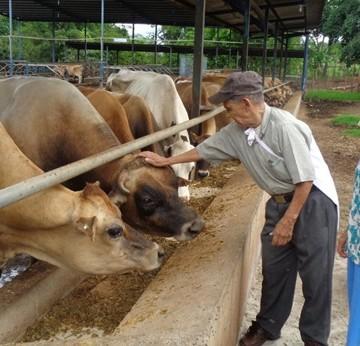 De visita en la granja 01